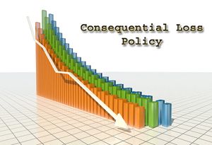 Consequential Loss Policy